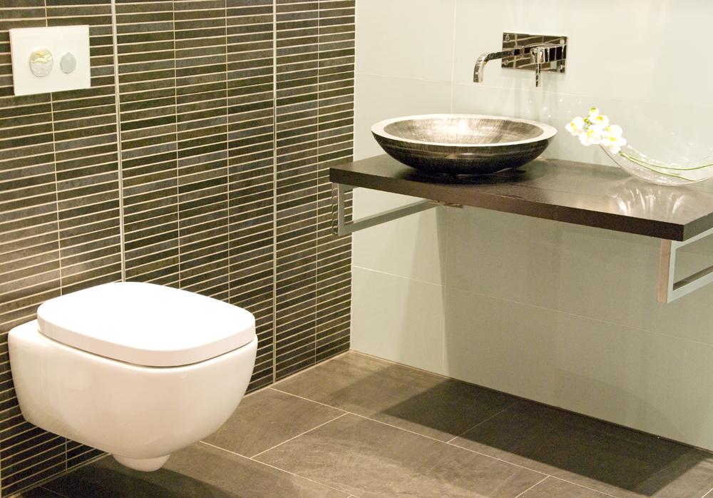 hangend toilet badkamer