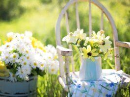 zomer tuin