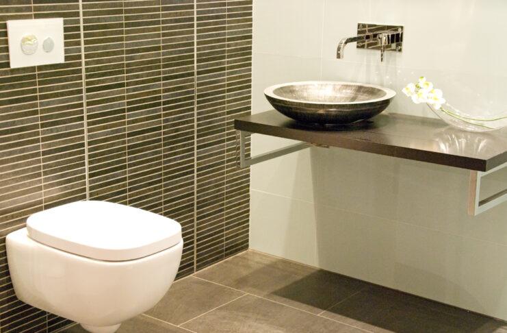 toilet make-over
